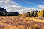 Grand Mesa Colors Print by Bob Hislop