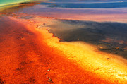 Clare VanderVeen - Grand Prismatic Colors II