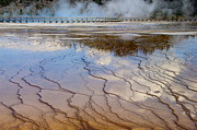 Prismatic Prints - Grand Prismatic Runoff - Yellowstone Print by Sandra Bronstein