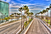 Celeb Metal Prints - Grand Prix Of Long Beach Metal Print by Heidi Smith