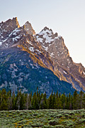 Adam Pender Prints - Grand Teton From Jenny Lake Print by Adam Pender