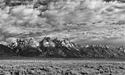 Monochromes Art - Grand Teton Majesty by Sandra Bronstein
