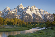 Dan Thornberg Acrylic Prints - Grand Teton mountains with stream in morning light Acrylic Print by Dan Thornberg