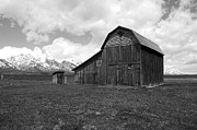 Rustic Photos - Grand Teton National Park Barn on Mormon Row Black and White by Shawn OBrien