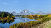 Fall Colors Autumn Colors Pyrography Posters - Grand Tetons and Oxbow Bend Poster by Daniel Behm