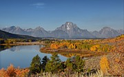 Fall Colors Autumn Colors Pyrography Posters - Grand Tetons at Oxbow Bend Poster by Daniel Behm