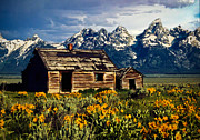 Grand Memories Posters - Grand Tetons Cabin Poster by John Haldane