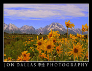 Jon Dallas - Grand Tetons