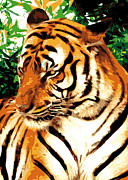 Animals Mixed Media Framed Prints - Grand Tiger O Framed Print by Eakaluk Pataratrivijit