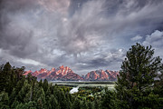 Tetons Art - Grand Treeton by Jon Glaser