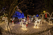 Sven Brogren - Grand Xmas Light Display