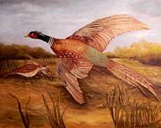 Laura Brown - Granddads pheasant