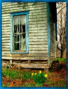 Abandoned Houses Prints - Grandmas Daffodyls Print by Julie Dant