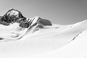 Meadows Photos - Granite Glacier by Ian Stotesbury