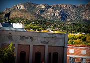 Prescott Photos - Granite Mountain From Downtown by Aaron Burrows