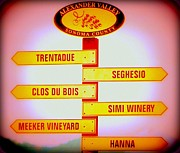 Directional Signage. Posters - Grape Country Poster by Antonia Citrino
