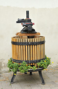Wine-press Framed Prints - Grape press Framed Print by Matthias Hauser