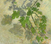 Vineyard Art Painting Posters - Grape vine  Poster by Nurit Shany