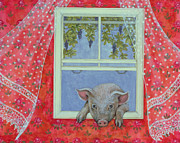 Pig Art - Grapes at the Window by Ditz