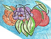 Sterling Drawings - Grapes by Becky Sterling