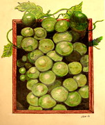 Grape Leaves Drawings Posters - Grapes From A Frame Poster by Joseph Hawkins
