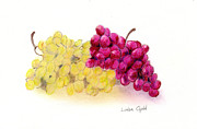 Grapes Print by Linda Ginn