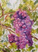 Maria Varga-Hansen - Grapes