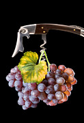 Grape Leaf Framed Prints - Grapes on Corkscrew Framed Print by Avinash Pandey