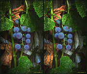 Grape Leaves Posters - Grapes On The Vine - Gently cross your eyes and focus on the middle image Poster by Brian Wallace