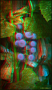 Concord Digital Art Framed Prints - Grapes On The Vine - Use Red-Cyan filtered 3D glasses Framed Print by Brian Wallace