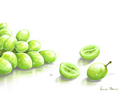 Green Fruit Prints - Grapes Print by Veronica Minozzi