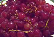 Food And Beverage Photo Originals - Grapes by William Ragan