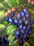 Blue Grapes Painting Posters - Grapevine Poster by Carol Sweetwood