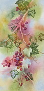 Green Burgandy Prints - Grapevine Print by Deborah Ronglien