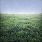 Green Grass Framed Prints - Grass and sky  Framed Print by Les Cunliffe
