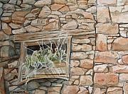 Central Colorado Framed Prints - Grass in the Window Framed Print by Jenny Armitage