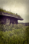 Cabin Window Framed Prints - Grass Roof on Cottage Framed Print by Jill Battaglia
