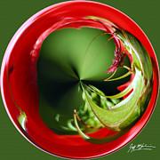 Jeff McJunkin - Grasshopper Orb II