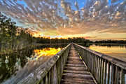 Florida Bridges Prints - Grassy Waters Evening Print by Debra and Dave Vanderlaan