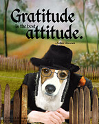 Kathy Tarochione - Gratitude is the best...