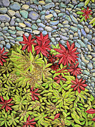 Formal Flower Paintings - Gravel Garden by Cora Morley Eklund