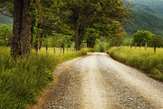 Cades Cove Photo Posters - Gravel Road in the Smokies Poster by Andrew Soundarajan