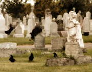 Ravens In Graveyard Prints - Graveyard Fun Print by Gothicolors And Crows
