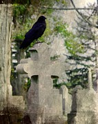 Crow Image Prints - Graveyard Occupant Print by Gothicolors And Crows