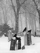 Gothicolors Donna Snyder - Graveyard Snow