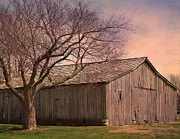 Deena Stoddard - Gray Campbell Farmstead...