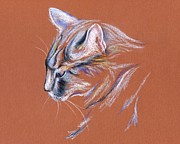 Cat Portraits Pastels Prints - Gray Cat in Profile - Pastel Print by MM Anderson