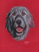 Hound Pastels Framed Prints - Gray Dog Framed Print by M Gerald Delaney