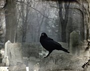 Gothicolors Donna Snyder - Gray Graveyard