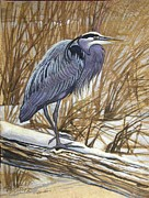 Amate Bark Paper Prints - Gray Heron Print by Anne Shoemaker-Magdaleno